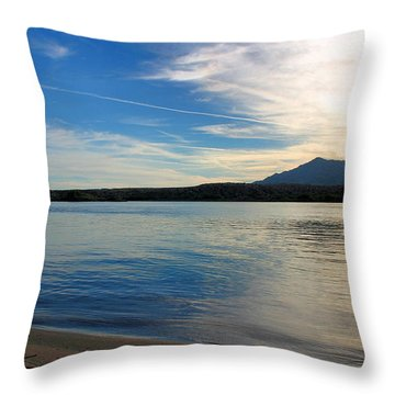Silvery Reflection Throw Pillow by Kristin Elmquist