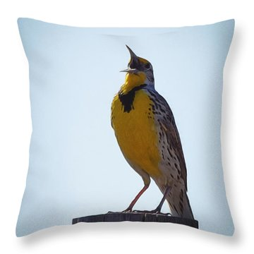 Sing Me A Song Throw Pillow by Ernie Echols