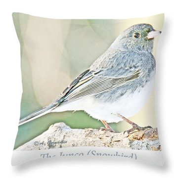 Throw Pillow featuring the photograph Slate-colored Junco Snowbird Female by A Gurmankin