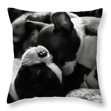 Sleeping Beauties - Boston Terriers Throw Pillow by Jordan Blackstone