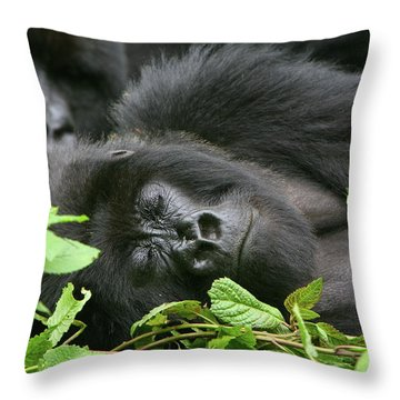 Sleeping Giant Throw Pillow by Bruce J Robinson