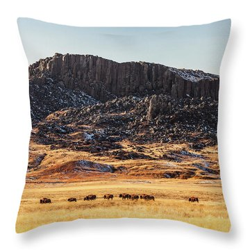 Snake Butte Throw Pillow by Todd Klassy