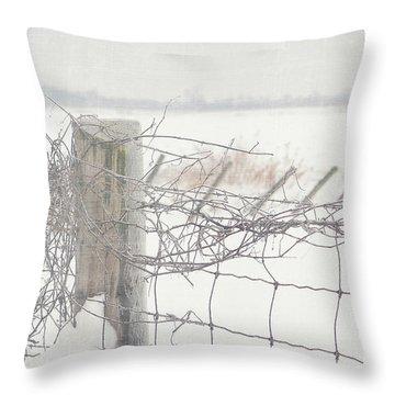 Snow Fence Throw Pillow by Sandra Cunningham