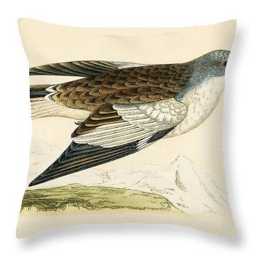 Snow Finch Throw Pillow by English School