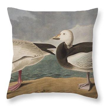 Snow Goose Throw Pillow by John James Audubon