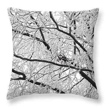 Snowy Branches Throw Pillow by Michal Boubin