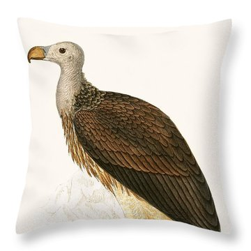 Sociable Vulture Throw Pillow by English School
