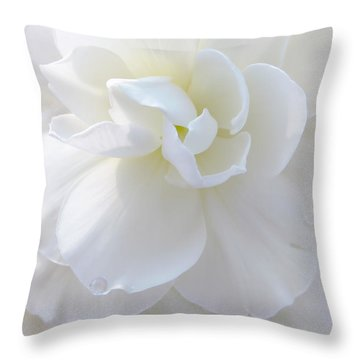 Soft Ivory Begonia Flower Throw Pillow by Jennie Marie Schell