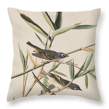 Solitary Flycatcher Or Vireo Throw Pillow by John James Audubon