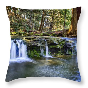 Solitude Throw Pillow by Skip Tribby