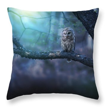 Solitude - Square Throw Pillow by Rob Blair