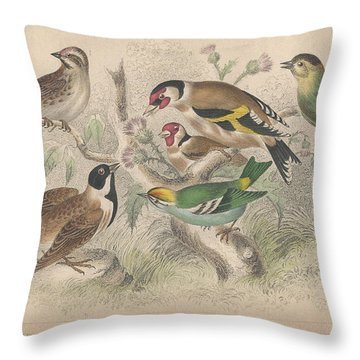 Songbirds Throw Pillow by Oliver Goldsmith