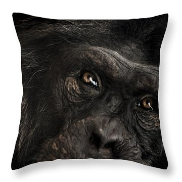 Sorrow Throw Pillow by Paul Neville