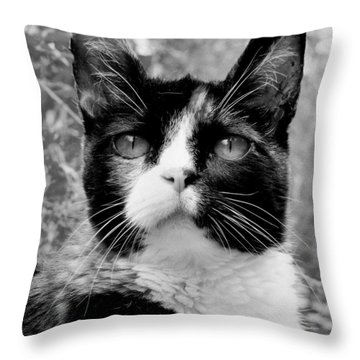 Souls Great And Small Throw Pillow by Rory Sagner