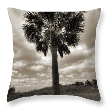 South Carolina Palmetto Palm Tree Throw Pillow by Dustin K Ryan