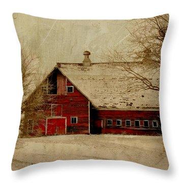 South Dakota Barn Throw Pillow by Julie Hamilton