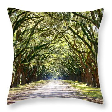 Southern Way Throw Pillow by Carol Groenen