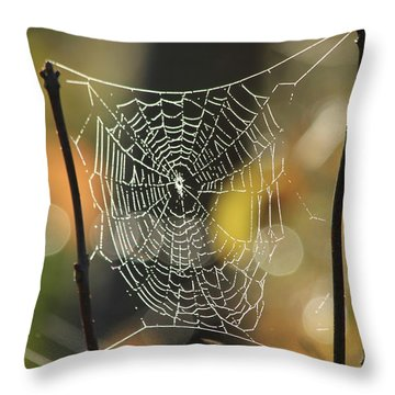 Spider's Creation Throw Pillow by Karol Livote