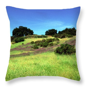 Splendor In The Grass Throw Pillow by Kathy Yates