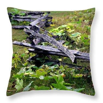 Split Rail Throw Pillow by Marty Koch