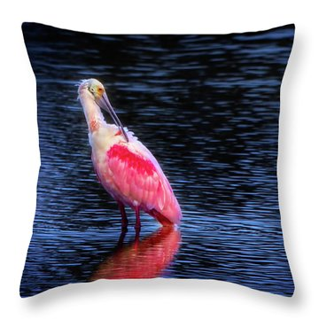 Spoonbill Sunset Throw Pillow by Mark Andrew Thomas