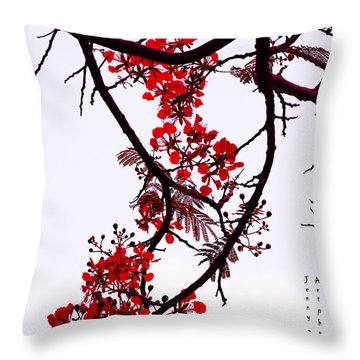 Spring Bloosom In Maldives. Flamboyant Tree Throw Pillow by Jenny Rainbow