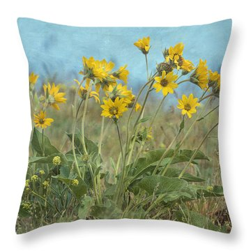 Spring In The Meadows Throw Pillow by Angie Vogel