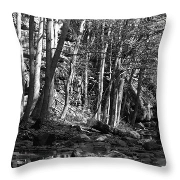 Spring Stream Throw Pillow by Anna Villarreal Garbis