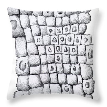 Square Wall Throw Pillow by Nancy Mueller