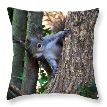 Squirrel I Throw Pillow by Jai Johnson
