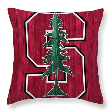 Stanford Barn Door Throw Pillow by Dan Sproul