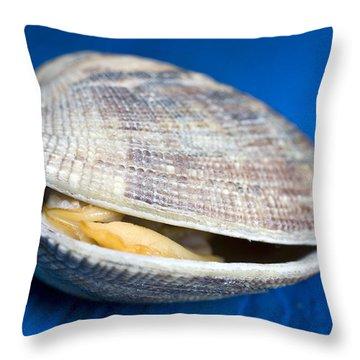 Steamed Clam Throw Pillow by Frank Tschakert