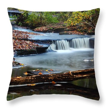 Stepstone Falls Throw Pillow by Andrew Pacheco