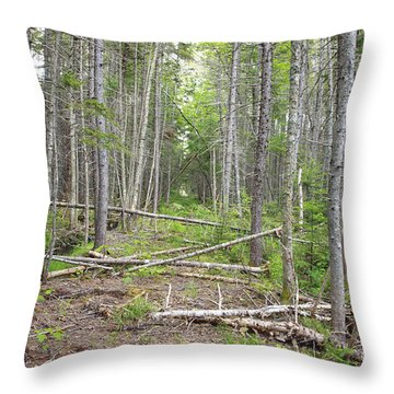 Stillwater Junction - White Mountains New Hampshire  Throw Pillow by Erin Paul Donovan