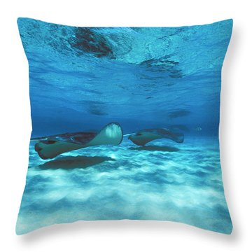 Stingray City Underwater With Stingrays Throw Pillow by James Forte