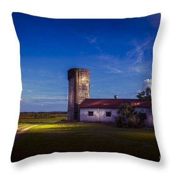 Strawberry Fields Delight Throw Pillow by Marvin Spates