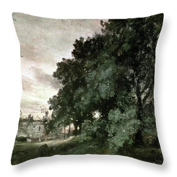 Study Of Trees Throw Pillow by John Constable