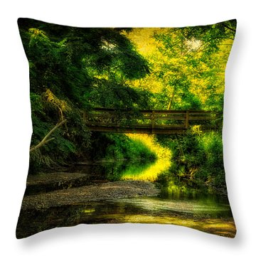 Summer Creek Throw Pillow by Thomas Woolworth