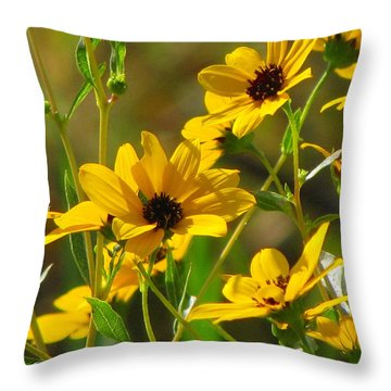 Sunflowers Along The Trail Throw Pillow by Barbara Bowen