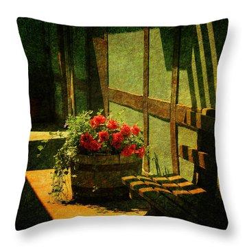 Sunny Corner Throw Pillow by Susanne Van Hulst