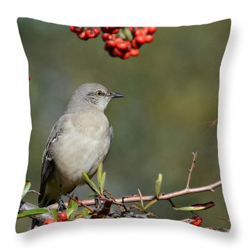Surrounded By Berries 2 Throw Pillow by Fraida Gutovich
