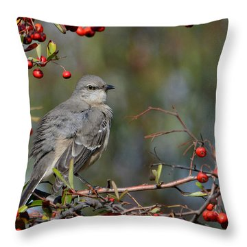 Surrounded By Berries Throw Pillow by Fraida Gutovich