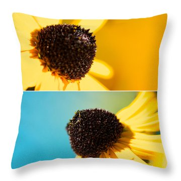 Susans Throw Pillow by Lisa Knechtel