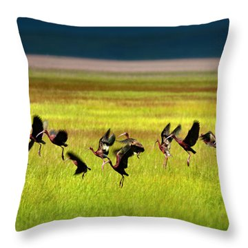 Take Off Throw Pillow by Leland D Howard