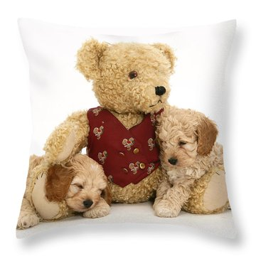 Teddy Bear With Puppies Throw Pillow by Jane Burton