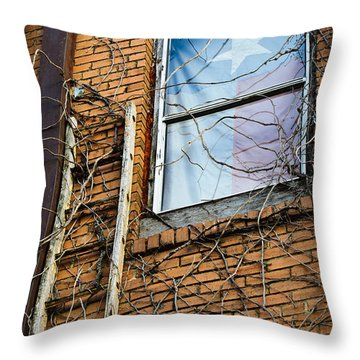 Texas Drapes Throw Pillow by Charles Dobbs