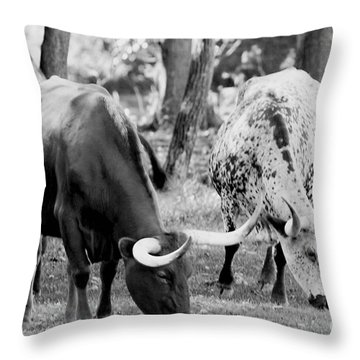 Texas Longhorn Steer In Black And White Throw Pillow by Alan Look