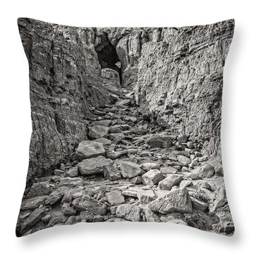 The 23rd Psalm Throw Pillow by Charles Dobbs