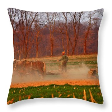 The Amish Way Throw Pillow by Scott Mahon