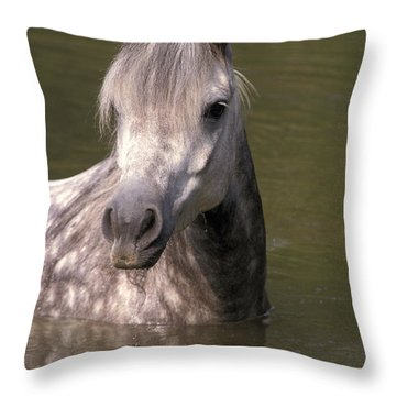 The Arab Throw Pillow by Michael Mogensen